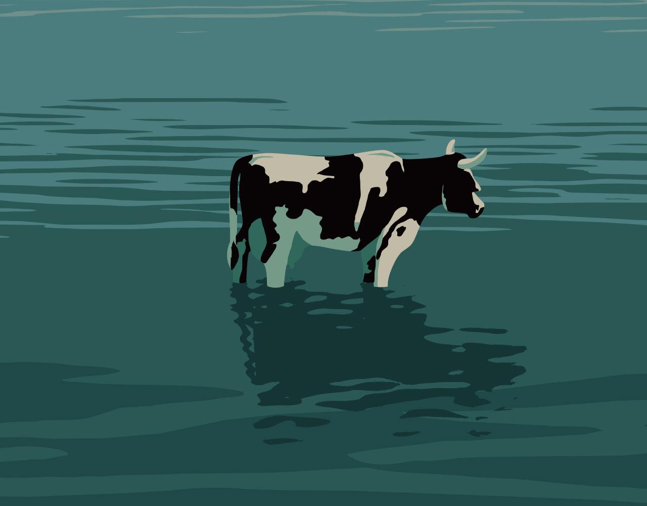 Rein dekoratives Element. Zu sehen ist ein Ausschnitt aus dem Plakat zur zugehörigen Veranstaltung. Auf diesem ist eine Zeichnung zu sehen, welche eine Kuh abbildet, die wiederum bis knapp unter die Knie im Wasser steht.