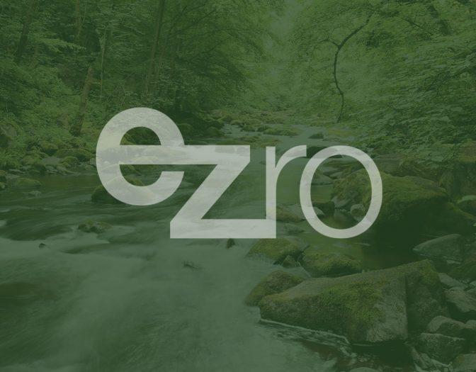 Rein dekoratives Element. Platzhalterbild mit einem grünen Hintergrund und dem Logo der ezro im Vordergrund.