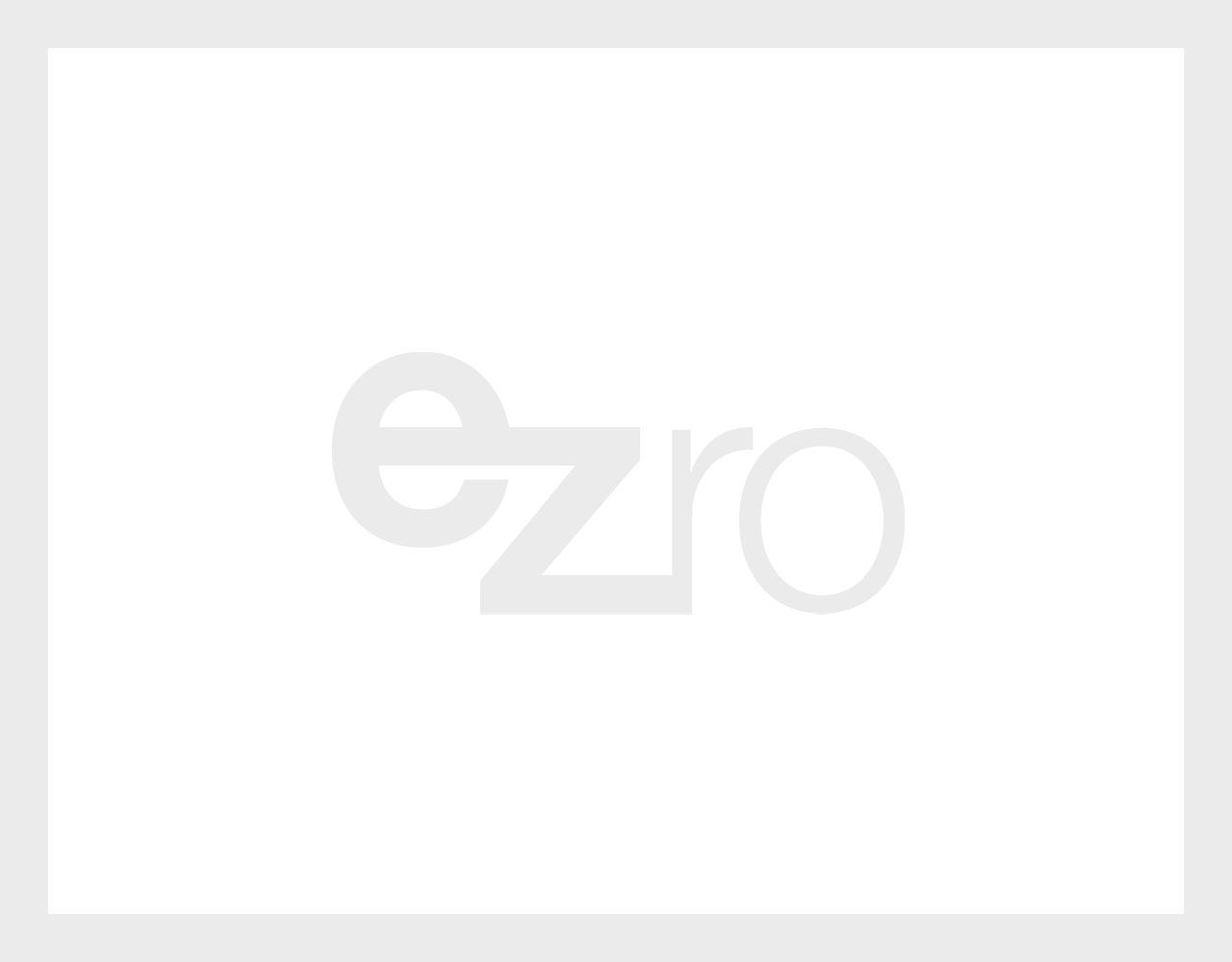Rein dekoratives Element. Zu sehen ist ein grauer Rahmen und in der Mitte im gleichen Grau das ezro-Logo. Dieses Bild dient als Platzhalter.