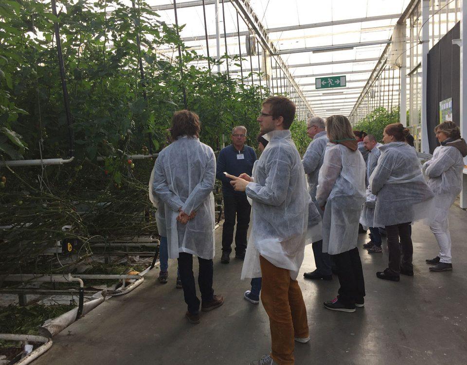 Bild vom Treffen der Klimatschutzmanger. Zu sehen sind 10 Personen in einem Gewächshaus. Alle Teilnehmer tragen Schutzbekleidung. Am Boden sieht man einige Bewässerungsrohre. In dem Gewächshaus werden Tomaten angepflanzt. Die Teilnehmer beobachten die Pflanzen bzw. den Vortragenden.