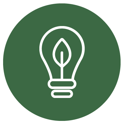 Rein dekoratives Element. Zu sehen ist ein Icon mit einer Glühbirne in welcher ein Blatt wächst.